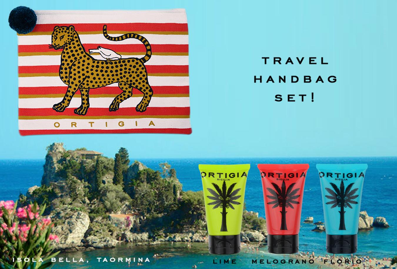 Travel Handbag Set